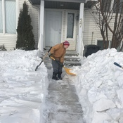Coles snow removal inc.