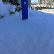 20 cms in South Surrey
