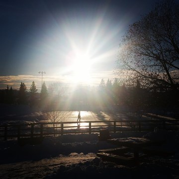 Sunset at Lacombe Dog Park