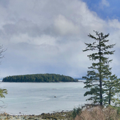 Forbes Island from Salmon Beach