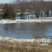 saugeen river overflowing