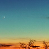 New Moon , Venus & Mercury