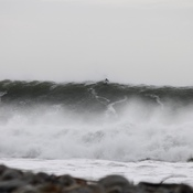 Surf gets large in Nova Scotia