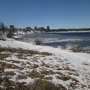 Thinning Ice in Ottawa River in Ottawa
