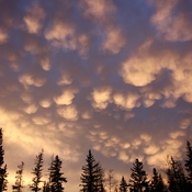 Mammatus Clouds over Hinton