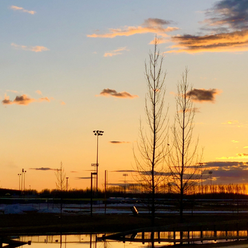 Syncrude Athletic Park