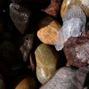 ROCKS Just Pick One!