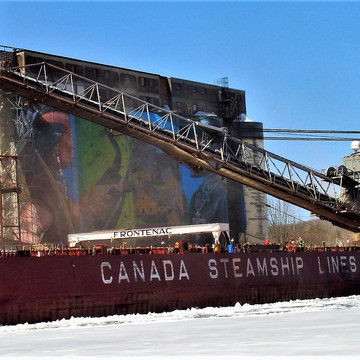 WHY THE COAST GUARD ICE BREAKER SAT RE GRAIN SHIPMENT SUN