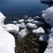 Sawpit Bay Ice