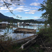 Procter beach junk left by trespasser. Now highwater in Kootenay river!