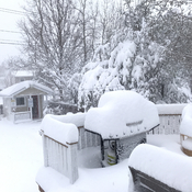 May 24 in Newfoundland