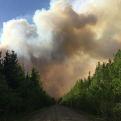 Forest Fire north of Buick BC