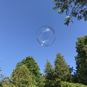 Clear skies means bubble time!