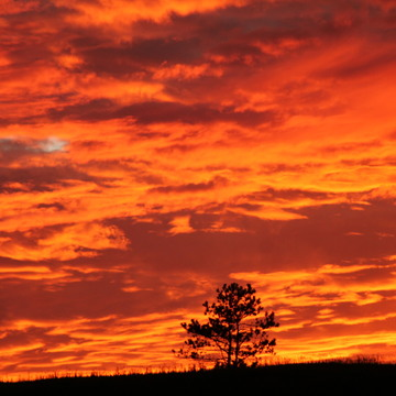 Tonights sunset over Bronte Creek Provincial Park
