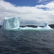 Iceberg in Blackabay Bonavista Bay.