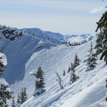 Powder to the people at Kicking Horse!