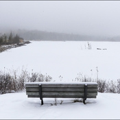 Bench, Elliot Lake.