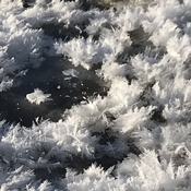 Ice crystals to brighten up your day