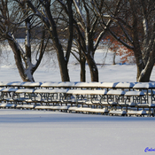 Picnic Tables awaiting Summertime Visitors