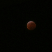 Blood Wolfe red Lunar Eclipse over Kingston