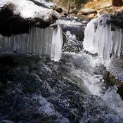 icicles in stream