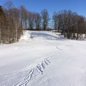 Cross country skiing today