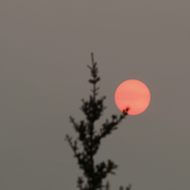 Smoky sunrise over Yellowknife, NWT