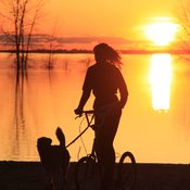 Sunset - Biking with dog