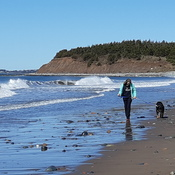 Sunny Spring morning at Lawrencetown Beach, NS
