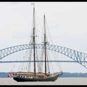 """Bluenose II "" a Trois-Rivieres."