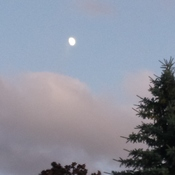 Evening Sky with moon