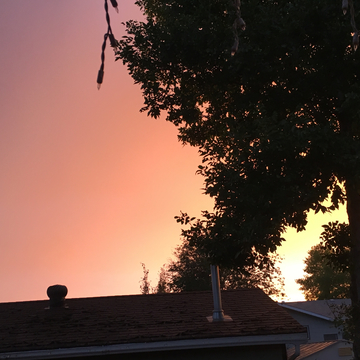 Bashaw, Alberta 7 Day Weather Forecast - The Weather Network