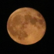 Spooky orange Full Moon