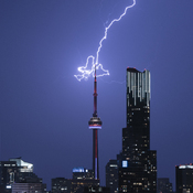 CN Tower Electric Bloom
