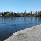 Along the boardwalk shore in Lakefield, Ontario