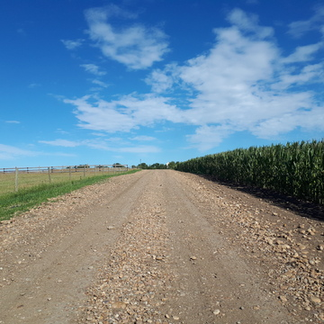 Country Roads and Corn field's