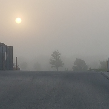 Foggy white Sunrise