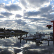 Morning marina views in Comox