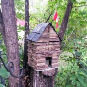 Squirrel condo built