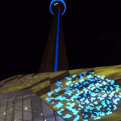 CN Tower at nigth.