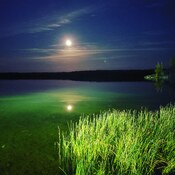 mid lake moonlight