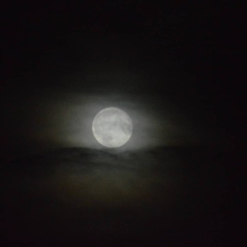 clouds covering the moon