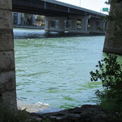 Green water at Sainte Anne de Bellevue