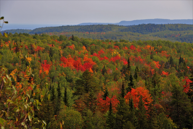 Fall Colours from Mt.McRae in the Nor'Wester Mountains Thunder Bay, Ontario, CA