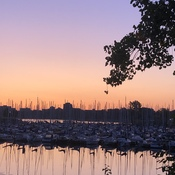 Nepean Sailing Club at Dawn