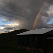 Rainbow over hay shed at Camelot Haven Alpacas