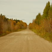 Fall on the backroads.