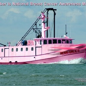 Breast Cancer Month October