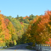 Fall in Gatineau Park
