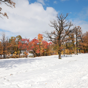Beautiful fall/winter scenery